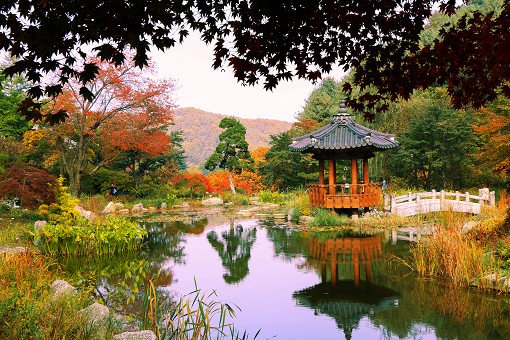 Nami Island & Railbike & Garden of Morning Calm Shuttle Package_15