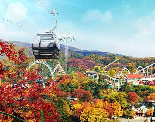 Everland Discount Ticket_3