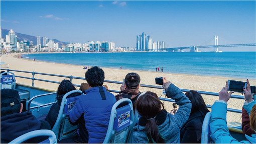 Busan City Tour Bus – Loop Tours_1