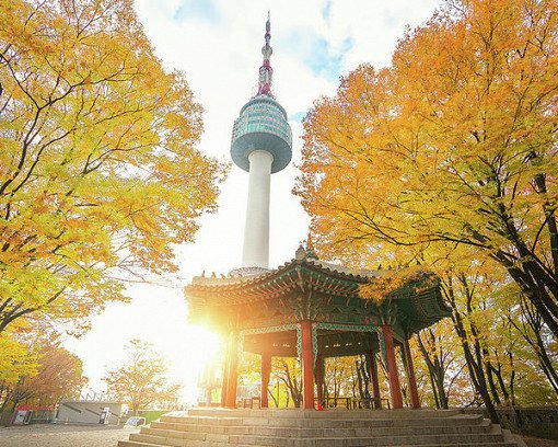 N Seoul Tower Observatory Discount Ticket & Combos_2