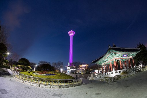 [Guided] Busan Tower & Market Night Walking Tour_6