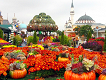 Everland One Day Ticket & Shuttle Bus Package_thumb_0