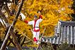 Korean Folk Village Discount Ticket_thumb_10