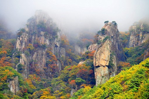 [Oct 23 - Nov 4] Daedun Mountain Autumn Foliage Shuttle Bus One Day Tour