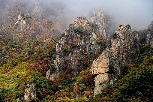 [Oct 23 - Nov 4] Daedun Mountain Autumn Foliage Shuttle Bus One Day Tour_5