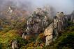 [Oct 23 - Nov 4] Daedun Mountain Autumn Foliage Shuttle Bus One Day Tour_thumb_5