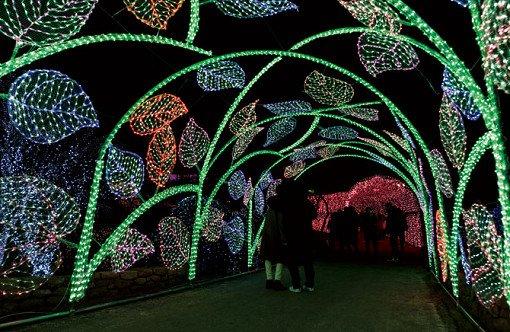 Garden of Morning Calm Winter Lighting Festival