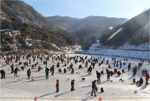[From Alpensia/Yongpyong] Pyeongchang Trout Ice Fishing Festival Half Day Tour_1