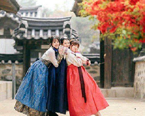 Private Half Day Palace Tour with Hanbok_0