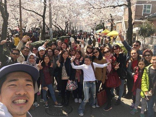 2018 Jinhae Cherry Blossom Festival One Day Shuttle Bus Tour_10