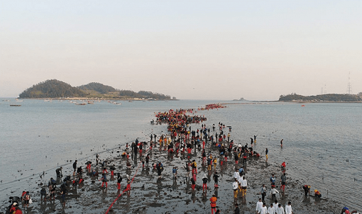 [From Seoul/Busan] 2019 Jindo Sea Parting Festival_9