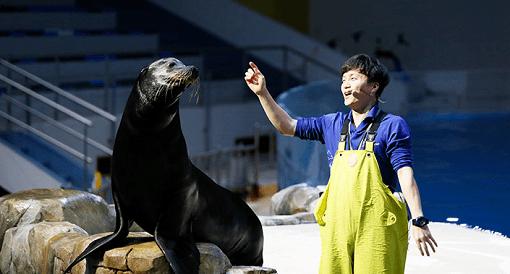Jeju Aqua Planet Discount Ticket_10