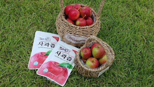 [Sep 2 - Nov 4] Pocheon Art Valley, Mini Apple Picking and Herb island One Day Tour_6