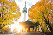 N Seoul Tower Combos Discount Ticket_thumb_2