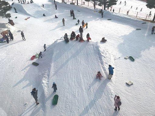 vivaldi snowyland kids snow sled
