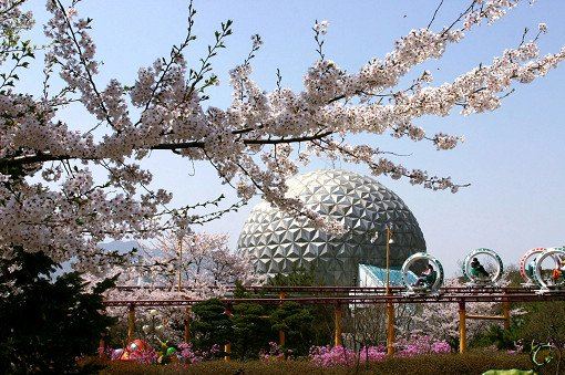 Seoul Land & Zoo Discount Ticket_8