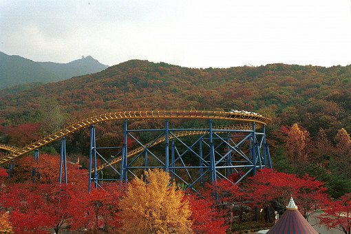 Seoul Land & Zoo Discount Ticket_6