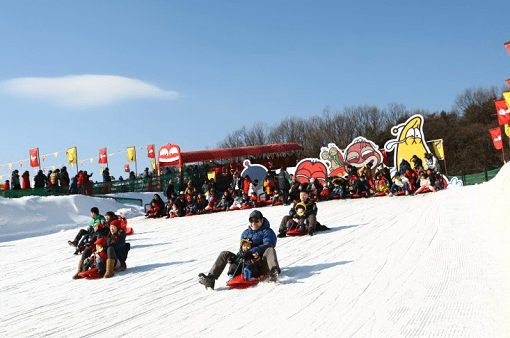 Seoul Land Theme Park & Seoul Land Zoo Discount Ticket_2
