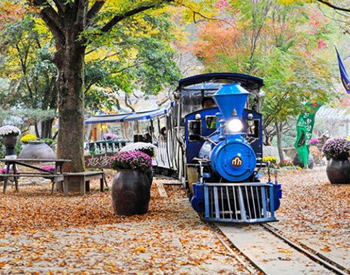 Nami Island All Inclusive Ticket (Zip Wire, Train, Bicycle)_1