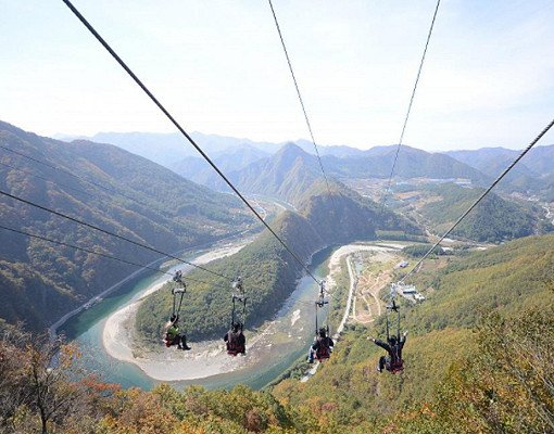 Nami Island All Inclusive Ticket (Zip Wire, Train, Bicycle)