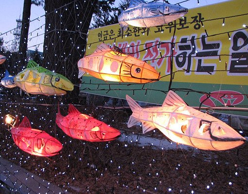 [Jan 5 - Jan 27] Hwacheon Ice Fishing Festival & Elysian Ski Resort Basic Group Lesson One Day Tour_5