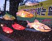 [Jan 5 - Jan 27] Hwacheon Ice Fishing Festival & Elysian Ski Resort Basic Group Lesson One Day Tour_thumb_5