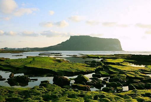 Jeju One Day Bus Tour Package (East)_12