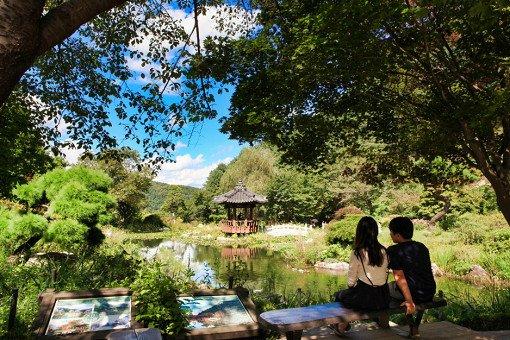 Nami Island& Garden of Morning Calm One Day Shuttle Bus Tour