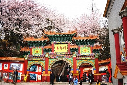 Incheon Tour: Visit Chinatown and City