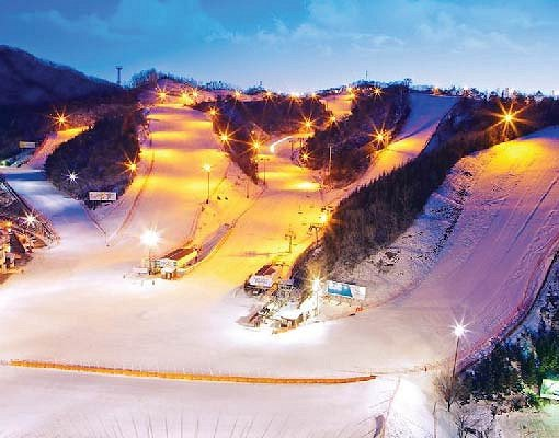 Night Ski Shuttle Bus Package : Elysian Ski Resort_1