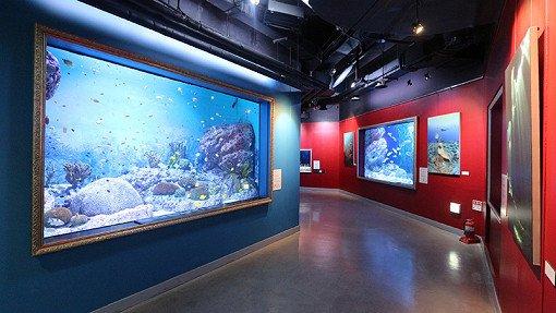 Coex Aquarium Discount Ticket_6