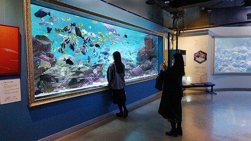 Coex Aquarium Discount Ticket_20