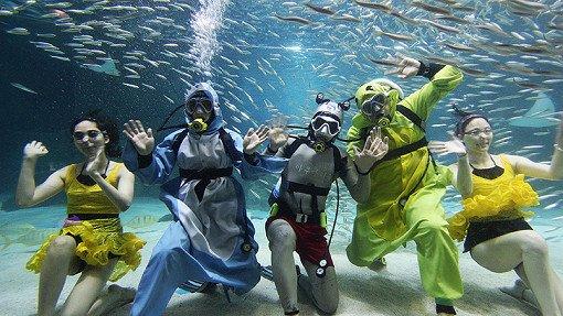 Coex Aquarium Discount Ticket_21