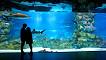 Coex Aquarium Discount Ticket_thumb_2