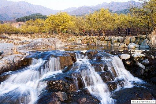 [From Seoul/Busan] Gwangyang Maehwa Festival & Gurye Sansuyu Village One Day Tour_14