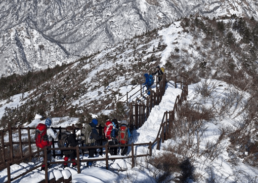 [From Alpensia/Yongpyong] Winter Seorak Mountain Half Day Tour_3