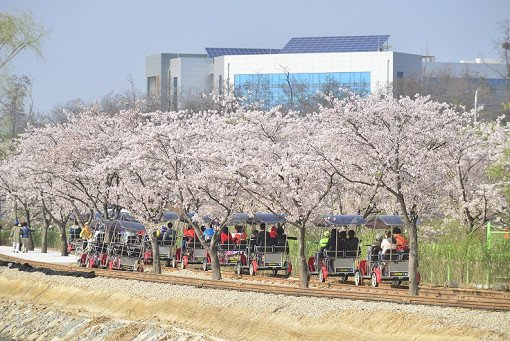 Korean Folk Village & Gwangmyeong Cave & Uiwang Railbike One Day Tour_14