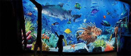 Sea Life Bangkok Ocean World Discount Ticket_1