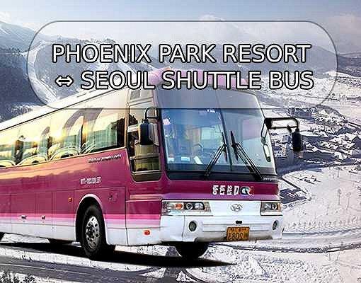 [Purple Bus] Seoul to/from Phoenix Park Ski Resort Shuttle Bus