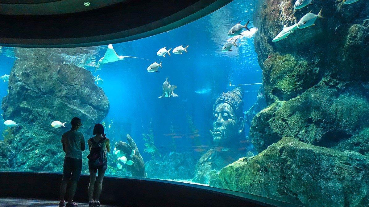 аквариум Siam Ocean World в Бангкоке
