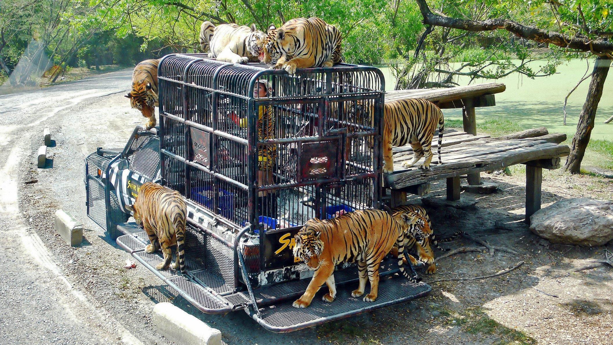 Safari World Bangkok ticket