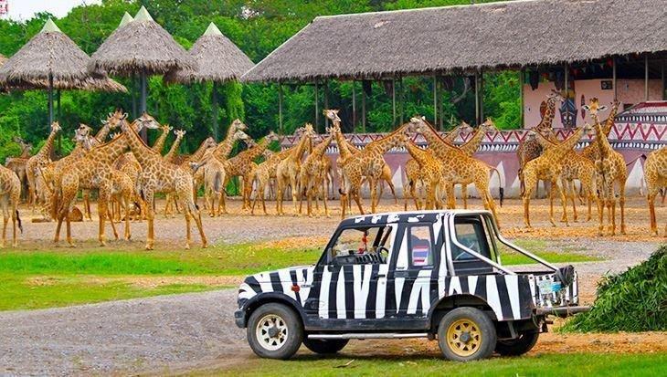 Safari World Bangkok price