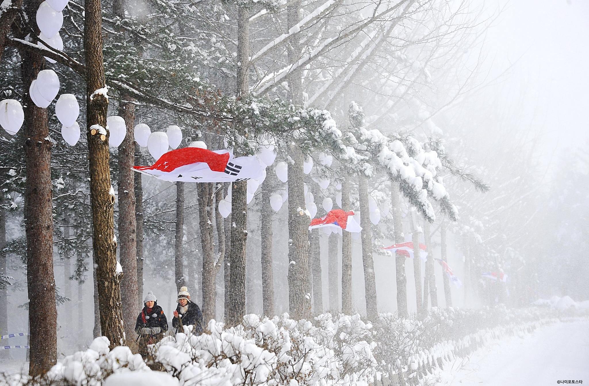 Snowing at Nami Island