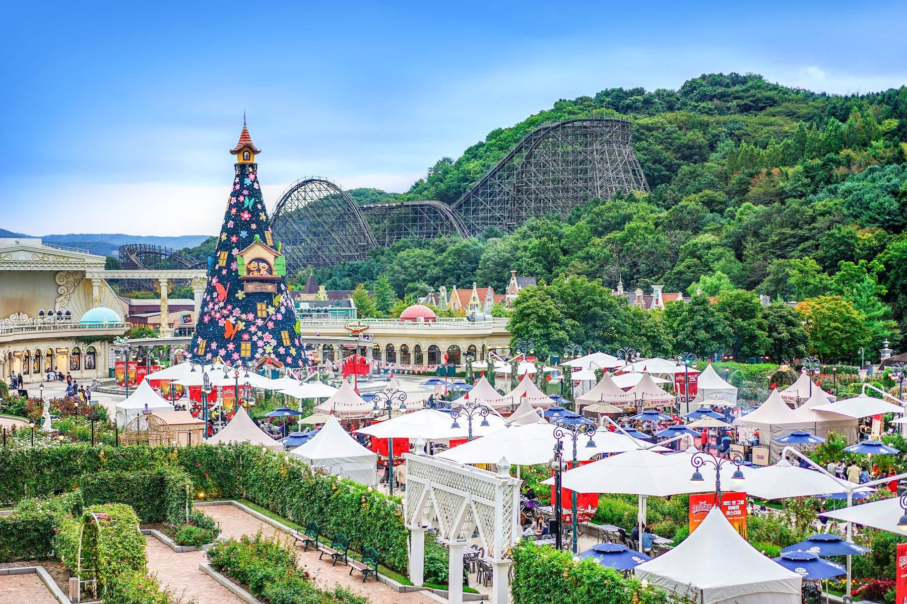 Everland Shuttle Bus Package