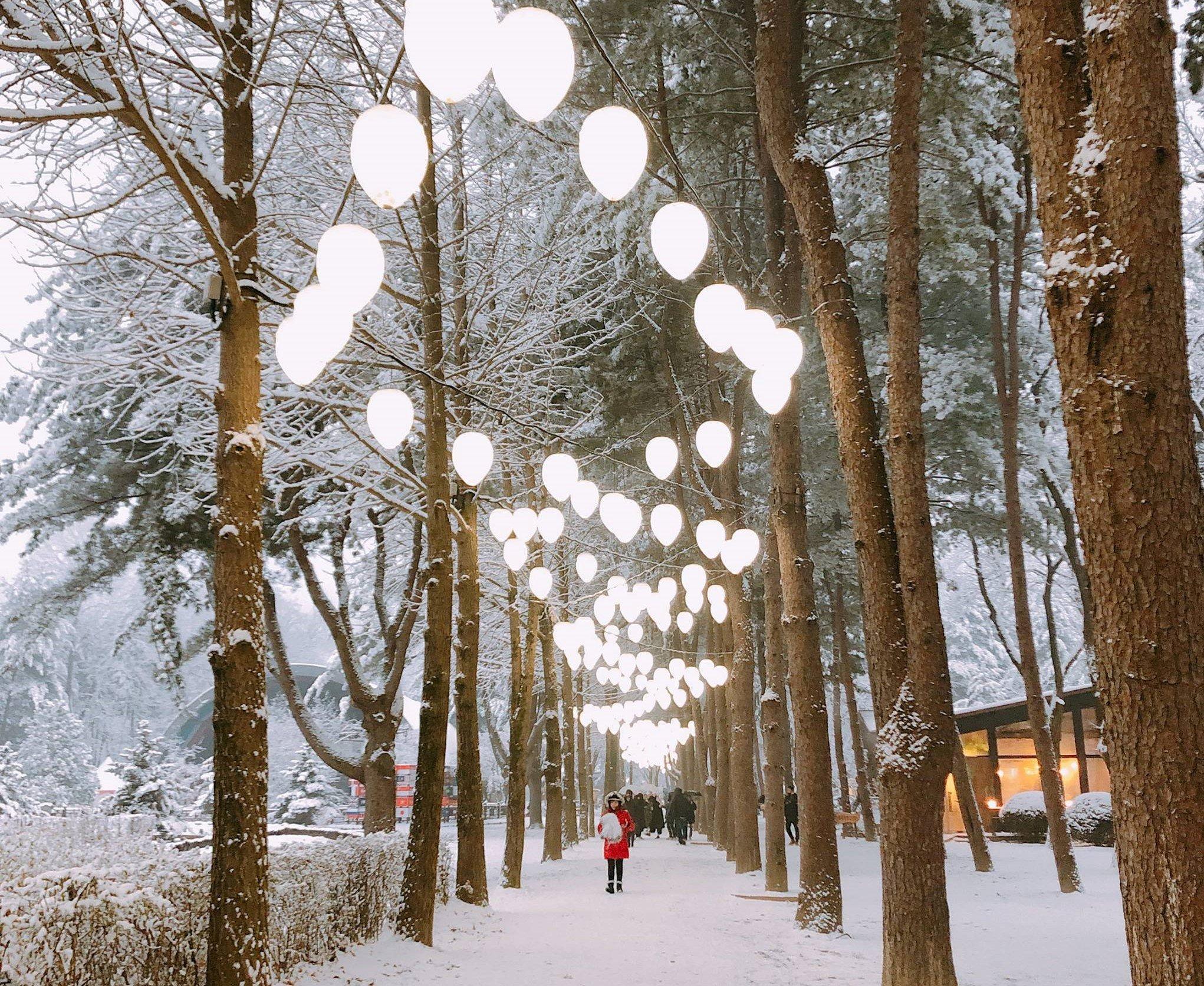 Nami Island Korea Winter View