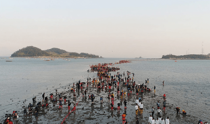 [From Seoul/Busan] 2019 Jindo Miracle Sea Road Festival