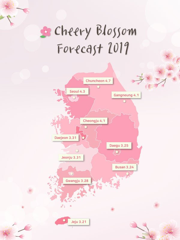 [From Seoul/Busan] 2020 Jinhae Cherry Blossom Festival One Day Tour