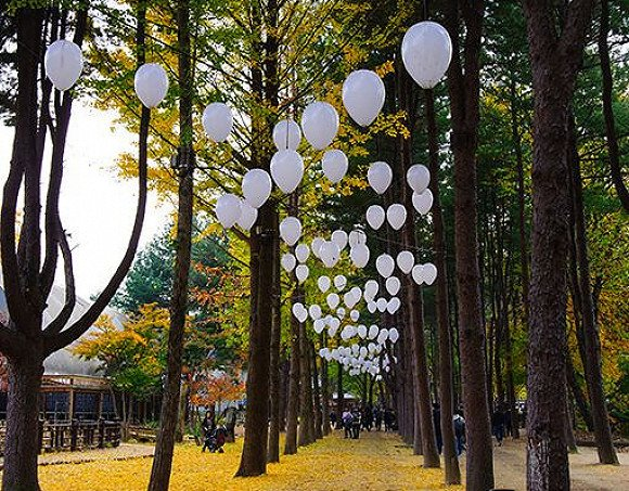 Nami Island & Seoul Private Day Tour