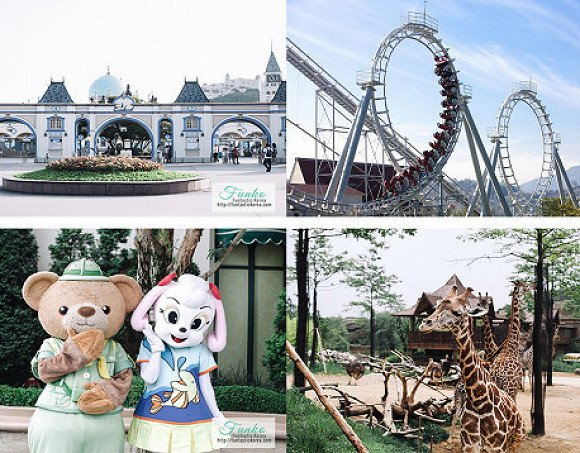 Everland Private Day Tour
